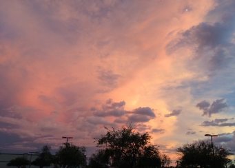 Sunset in Tucson, AZ