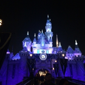 Disneyland @ night